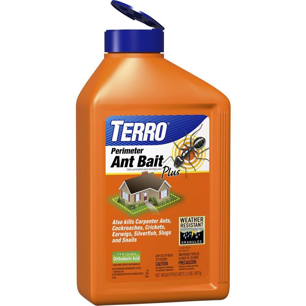 Terro 2 Lb Home Perimeter Ant Killer Granules T2600 The Home Depot