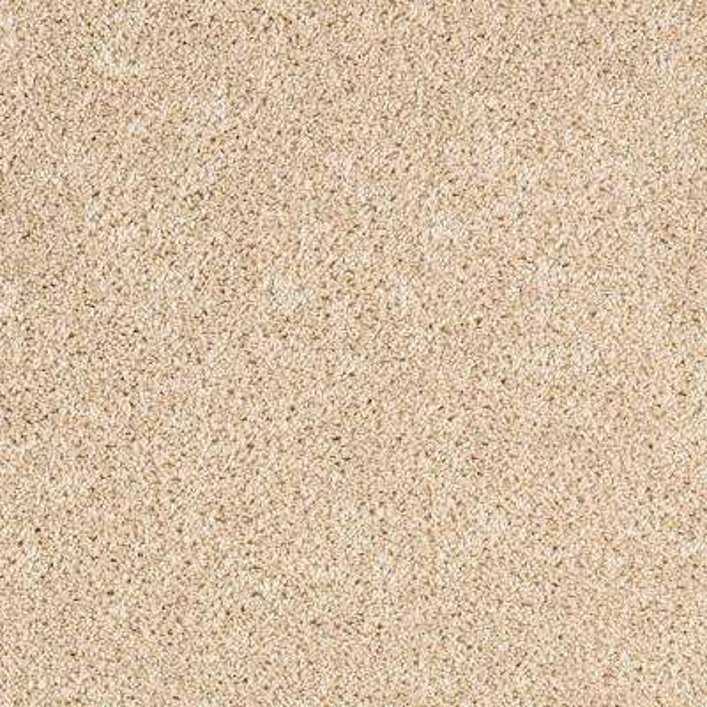 Gorrono Ranch I - Color Safe Haven Texture 12 ft. Carpet