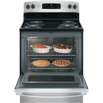 30 in. 5.0 cu. ft. Electric Range with Self-Cleaning Oven in Stainless Steel