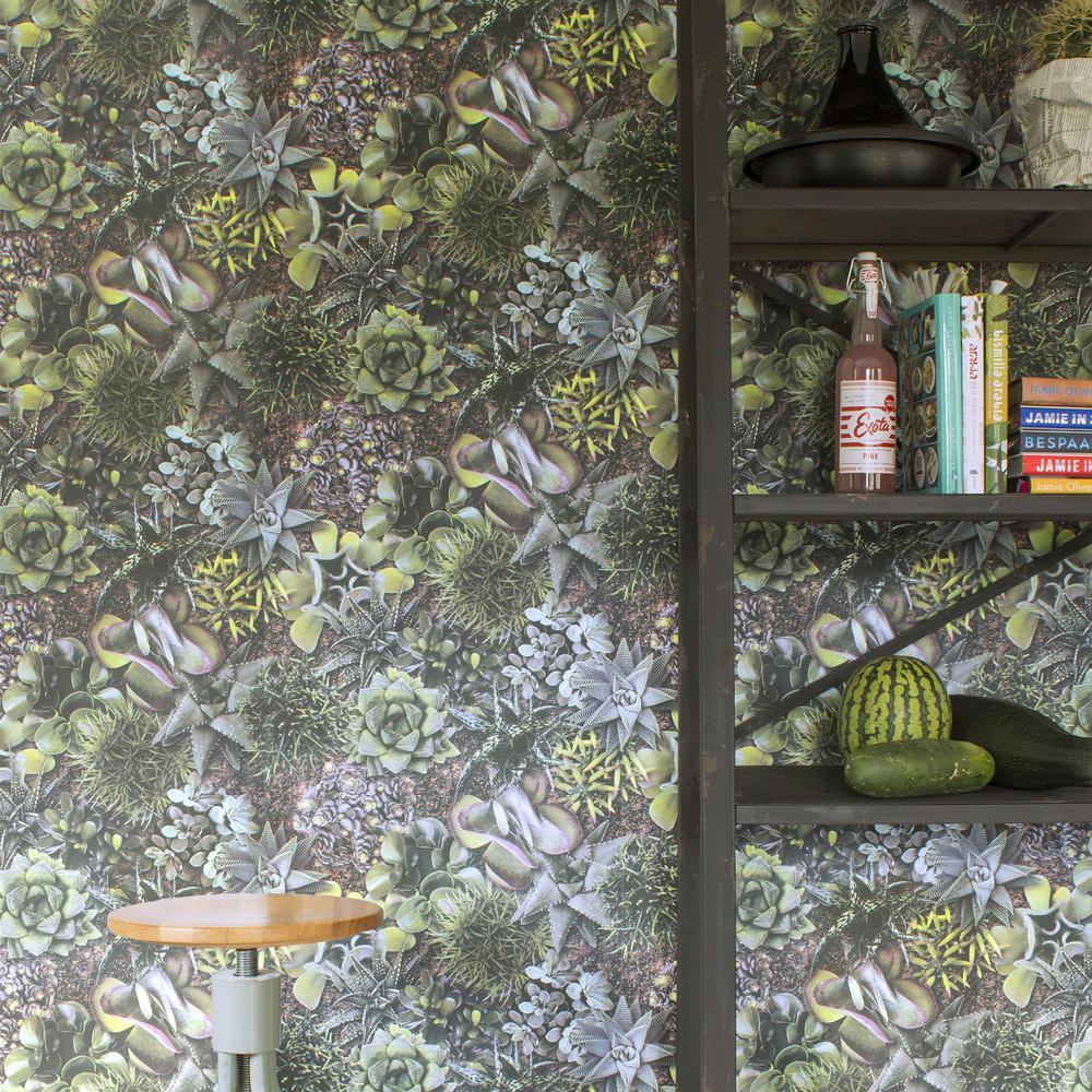 Strata Succulent Green Removable Wallpaper