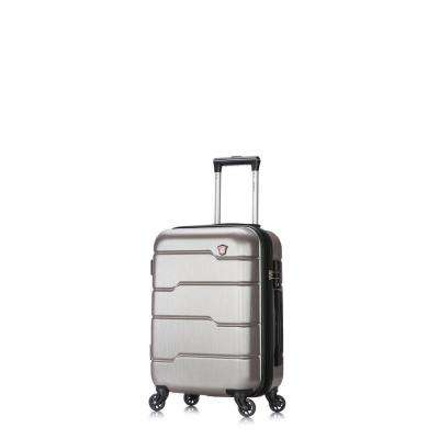 Rodez 20 in. Silver Lightweight Hardside Spinner Carry-on