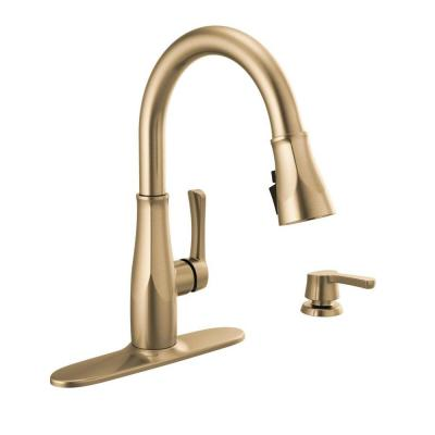 Owendale Single-Handle Pull-Down Sprayer Kitchen Faucet with ShieldSpray Technology in Champagne Bronze