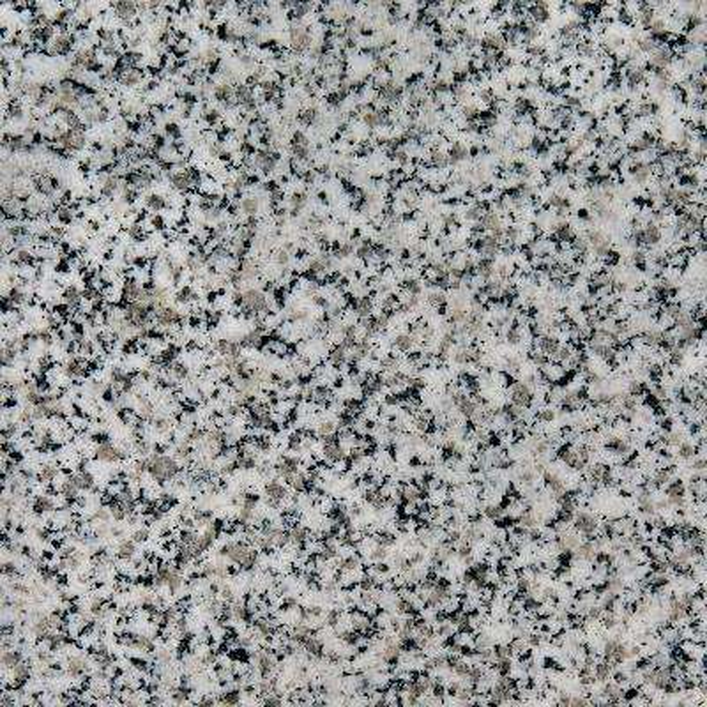 4 in. x 4 in. Granite Vanity Top Sample in Rushmore Grey