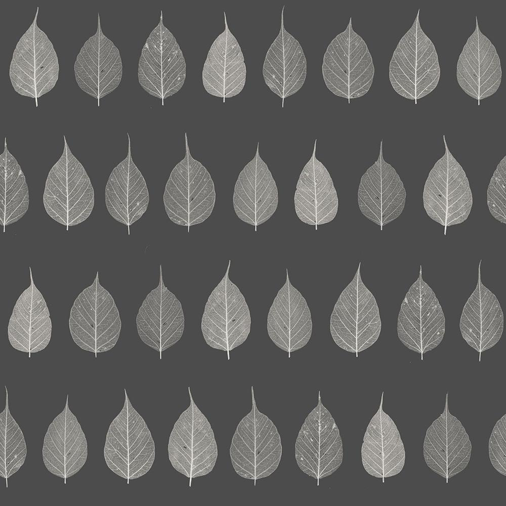 56.4 sq. ft. Greenhouse Charcoal Leaves Strippable Wallpaper