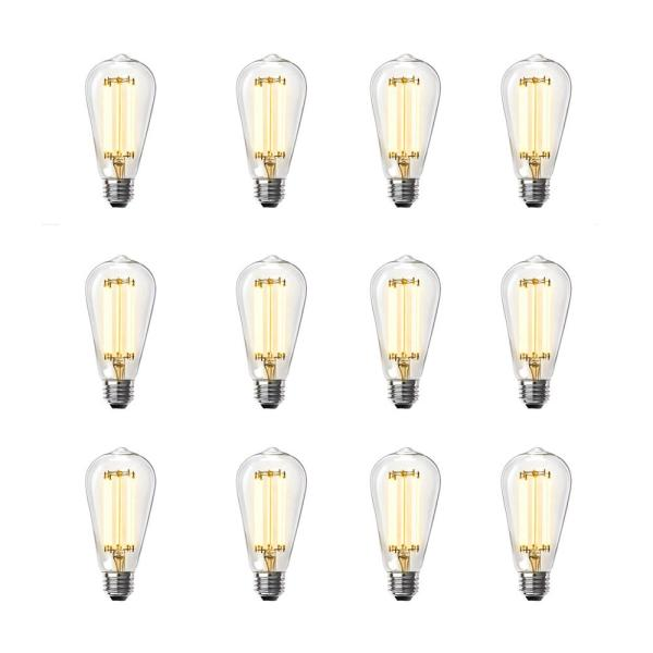 100-Watt Equivalent ST19 Dimmable LED Clear Glass Vintage Edison Light Bulb With Straight Filament Warm White (12-Pack)