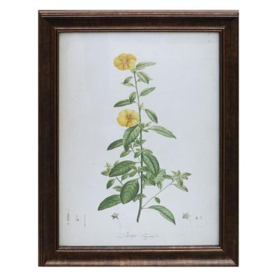Home Decorators Collection Antiqued Bronze Framed Acrylic Painting Yellow Flower Wall Art 28 in. H x 22 in. W