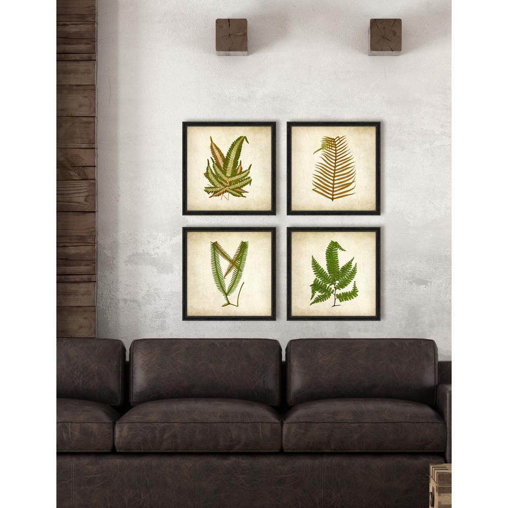 "18 in. x 18 in. ""Simple Fern VI"" Framed Giclee Print Wall Art"