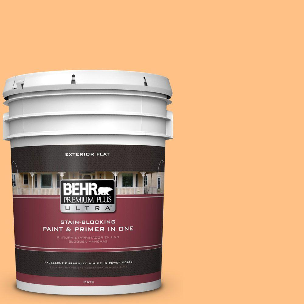 BEHR Premium Plus Ultra 5-gal. #PMD-68 Amber Sun Flat Exterior Paint