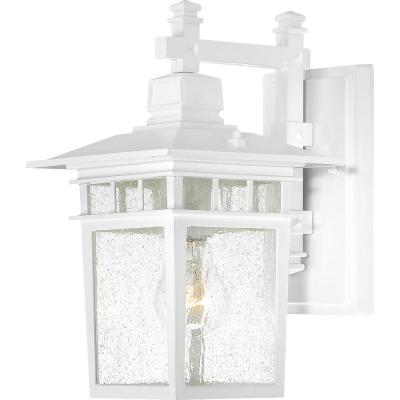 Connor White 1-Light Outdoor Hanging Lantern