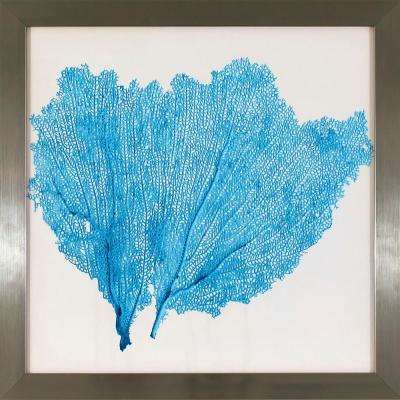17.75 in. x 17.75 in. Blue Sea Fan Study Printed Framed Wall Art