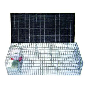 Bird B Gone Pigeon Trap with Shade, Food & Water Containers (35 inch x 16 inch x... by Bird B Gone