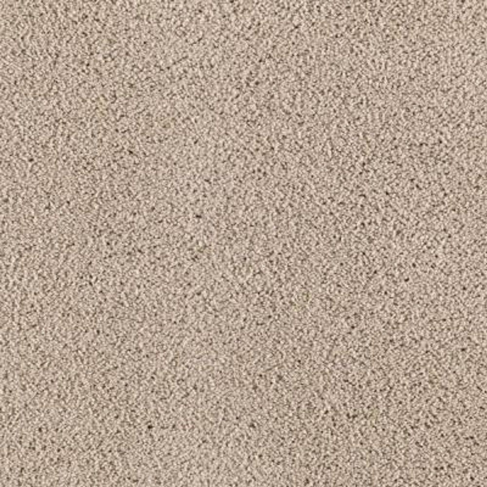 Carpet Sample - Wesleyan II - Color Shorescape Texture 8 in. x 8 in.