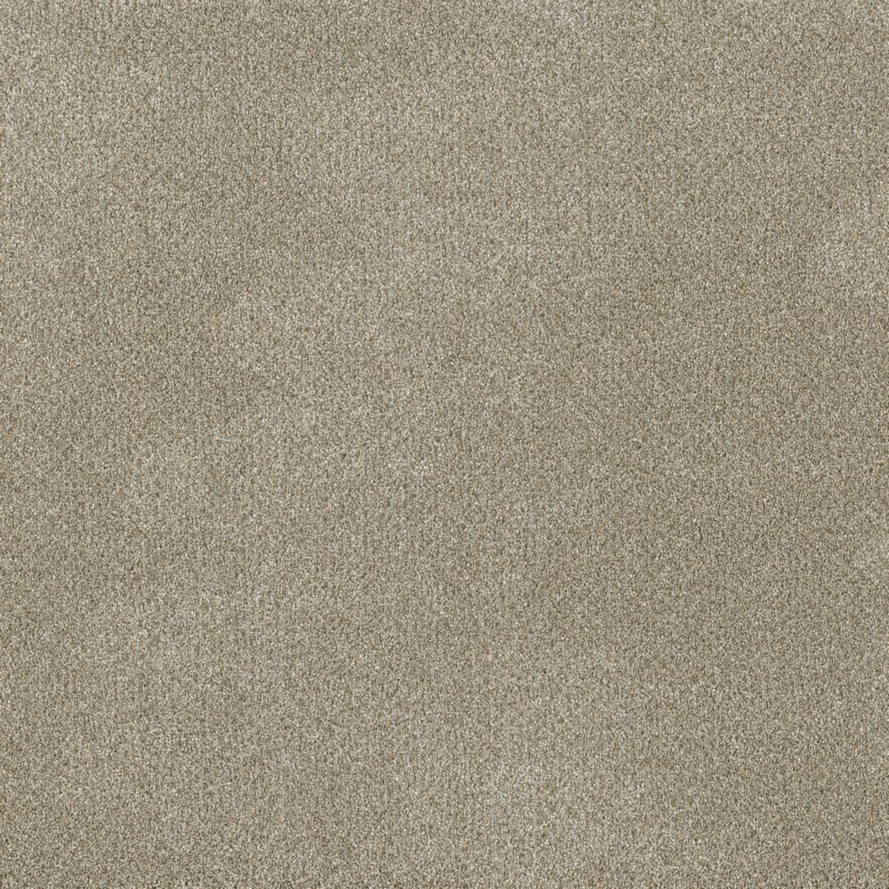 Home Decorators Collection Clareview - Color Eastglen Texture 12 ft. Carpet