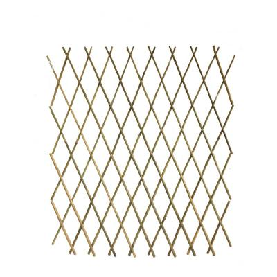 60 in. H Expandable Bamboo Trellis