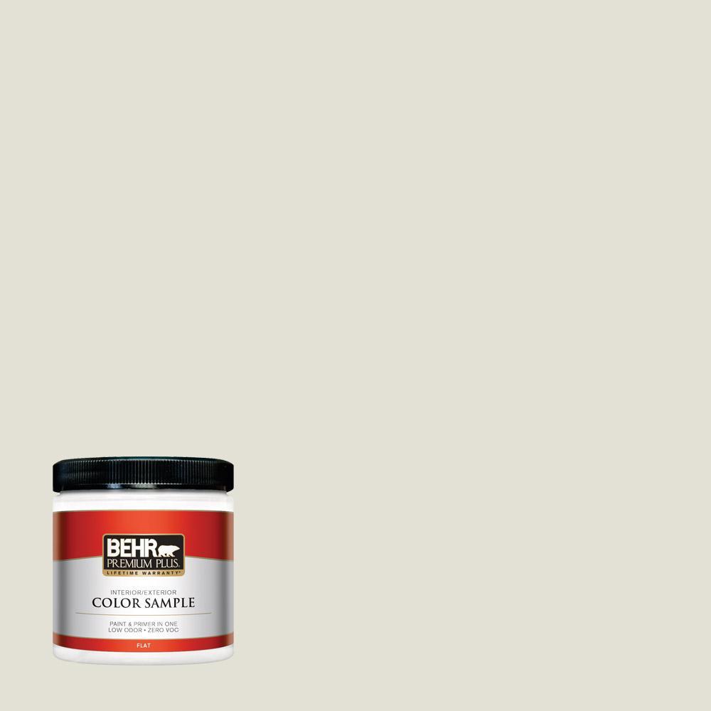 8 oz. #T18-09 Soft Focus Flat Interior/Exterior Paint Sample