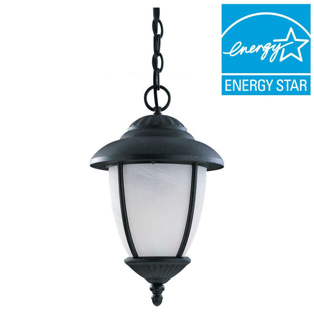 Sea Gull Lighting Kent 1-Light Outdoor Black Pendant