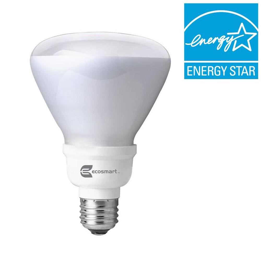 EcoSmart 65W Equivalent Daylight (6500K) R30 Instant Bright CFL Light Bulb (2-Pack)