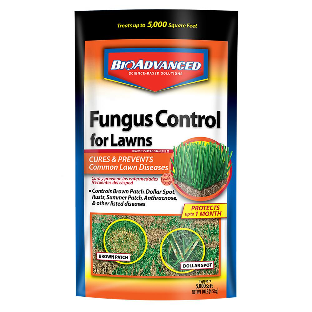 BioAdvanced 10 lbs. Granules Fungus Control for Lawns