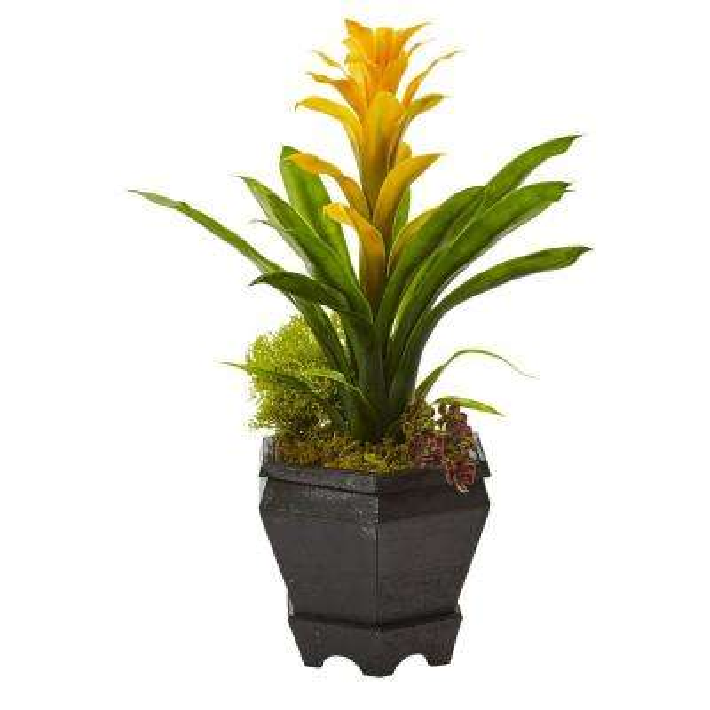 16.5 in. Bromeliad in Black Hexagon Planter in Yellow