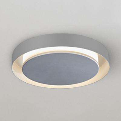 Talitha Collection 16 in. Silver/Nickel LED Modern Halo Ceiling Fixture