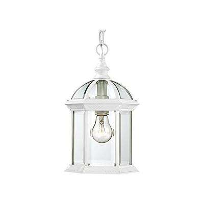 Wentworth White 1-Light Outdoor Hanging Lantern with Clear Glass