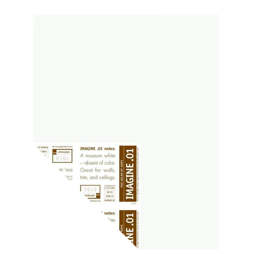 YOLO Colorhouse 12 in. x 16 in. Imagine .01 Pre-Painted Big Chip Sample