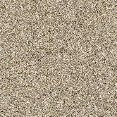 Color Sample - Supercharged II - Color Khaki Texture 8 in. x 8 in.