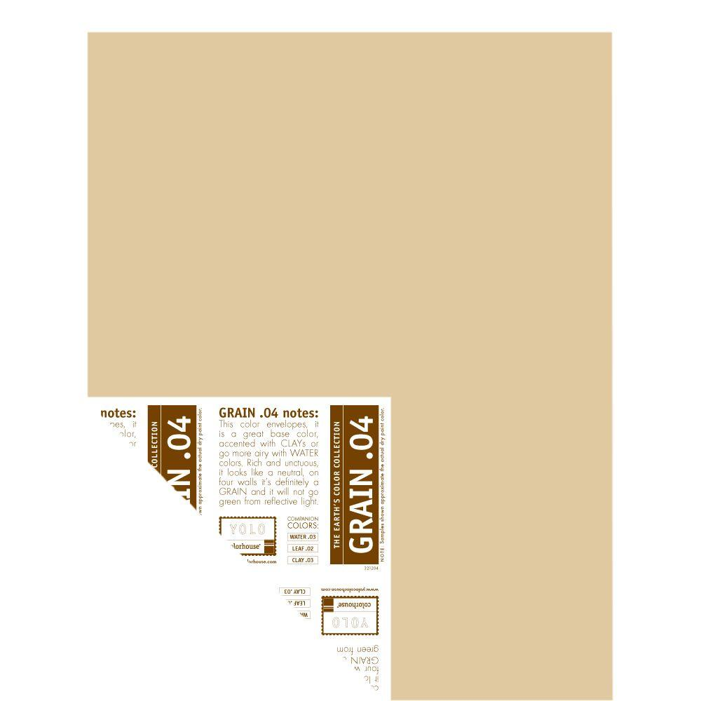 YOLO Colorhouse 12 in. x 16 in. Grain .04 Pre-Painted Big Chip Sample