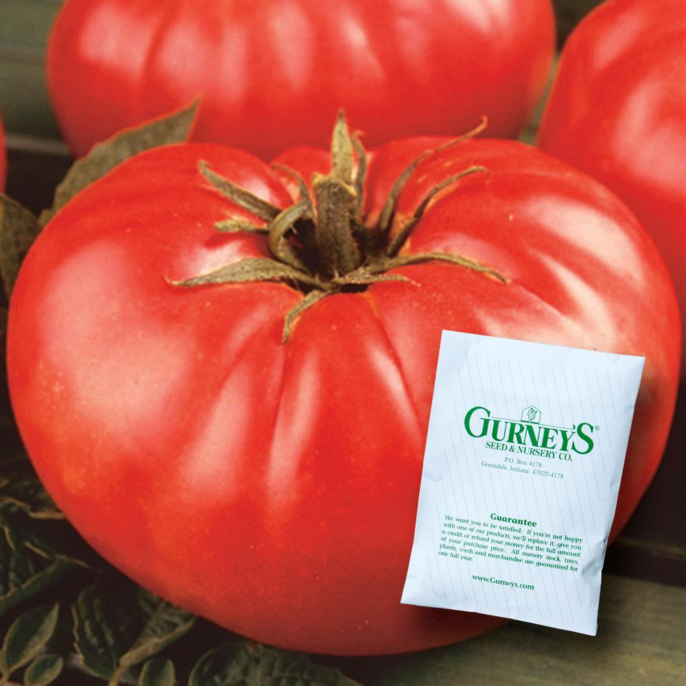 Gurney S Tomato Mortgage Lifter 30 Seed Packet