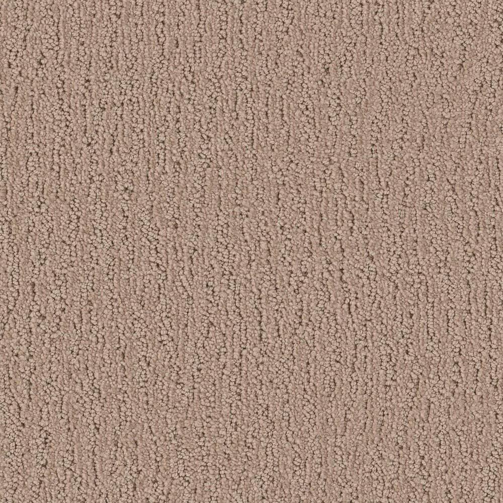 Platinum Plus Carpet Sample Victory Lane Color Compeor Pattern 8 In X