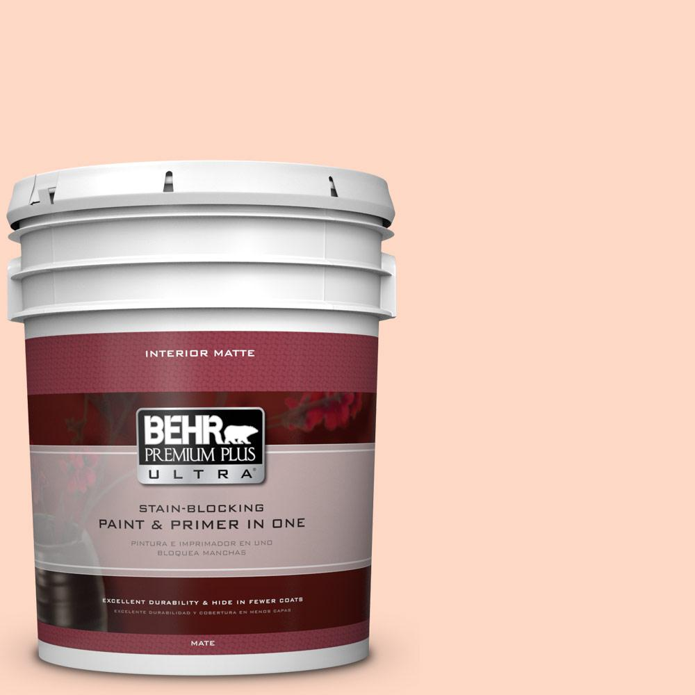 BEHR Premium Plus Ultra 5 gal. #220A-2 Friendship Flat/Matte Interior Paint
