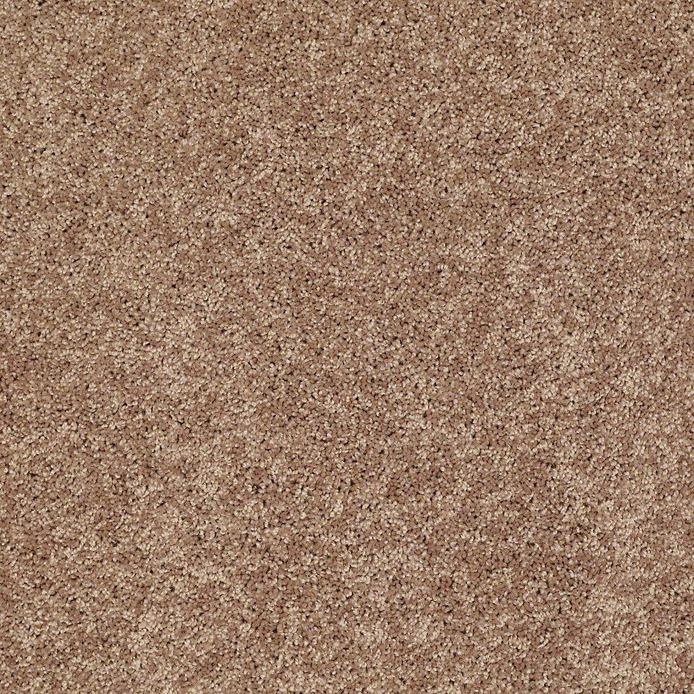 Trafficmaster Residential Carpet Sample Palmdale II 12