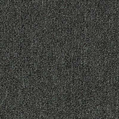 Carpet Sample - Top Rail 20 - Color Software Loop 8 in. x 8 in.