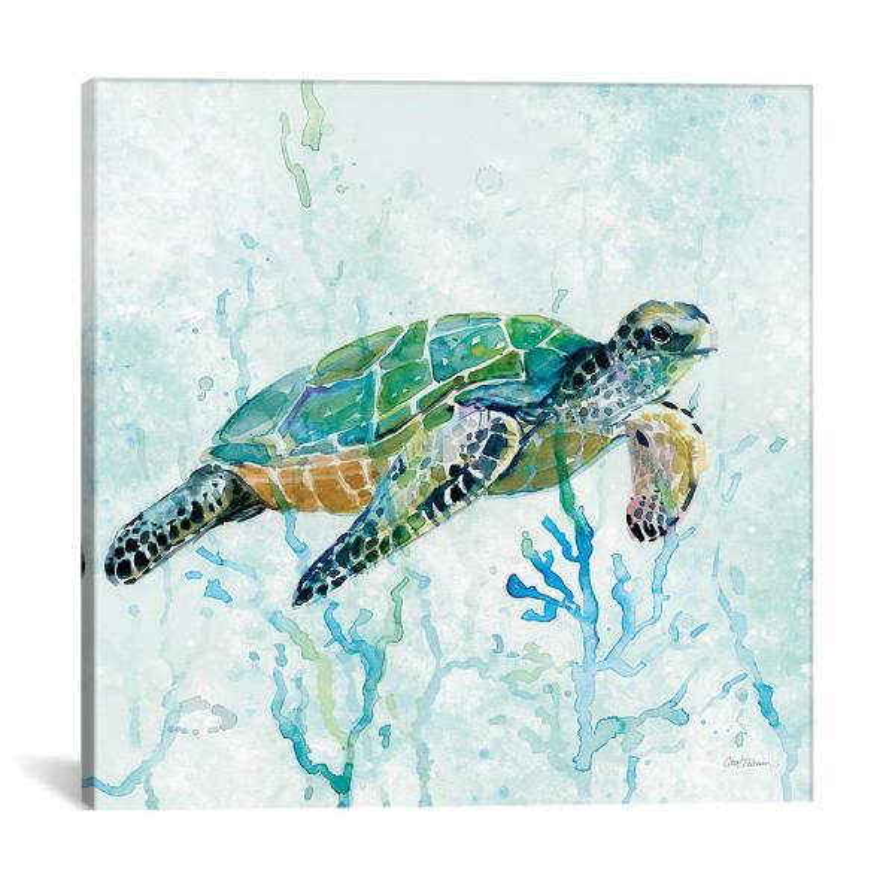 Icanvas Quot Sea Turtle Swim I Quot By Carol Robinson Canvas Wall