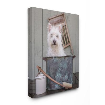 "16 in. x 20 in. ""Ready for a Bath Little White Dog in a Wash Tub Photograph"" by Edward M. Fielding Canvas Wall Art"