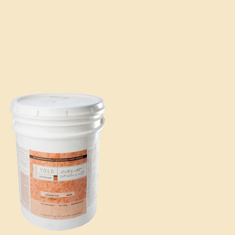 YOLO Colorhouse 5-gal. Create .01 Flat Interior Paint-DISCONTINUED