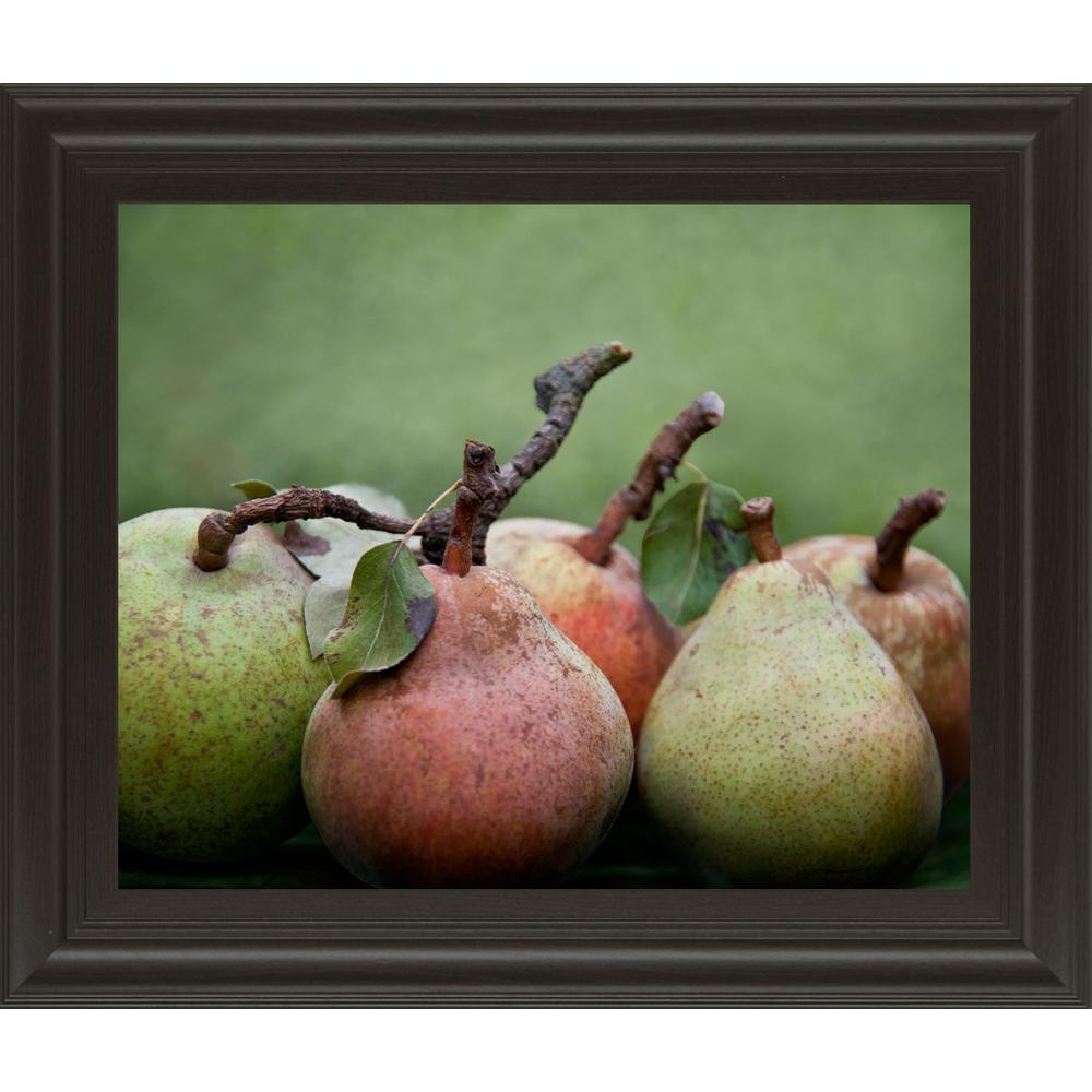 22 in. x 26 in. ''Comice Pear I'' by Rachel Perry
