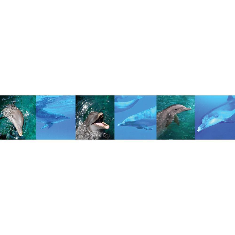 Dolphins Wallpaper Border Sample
