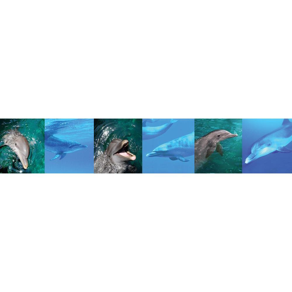 National Geographic Dolphins Wallpaper Border Sample