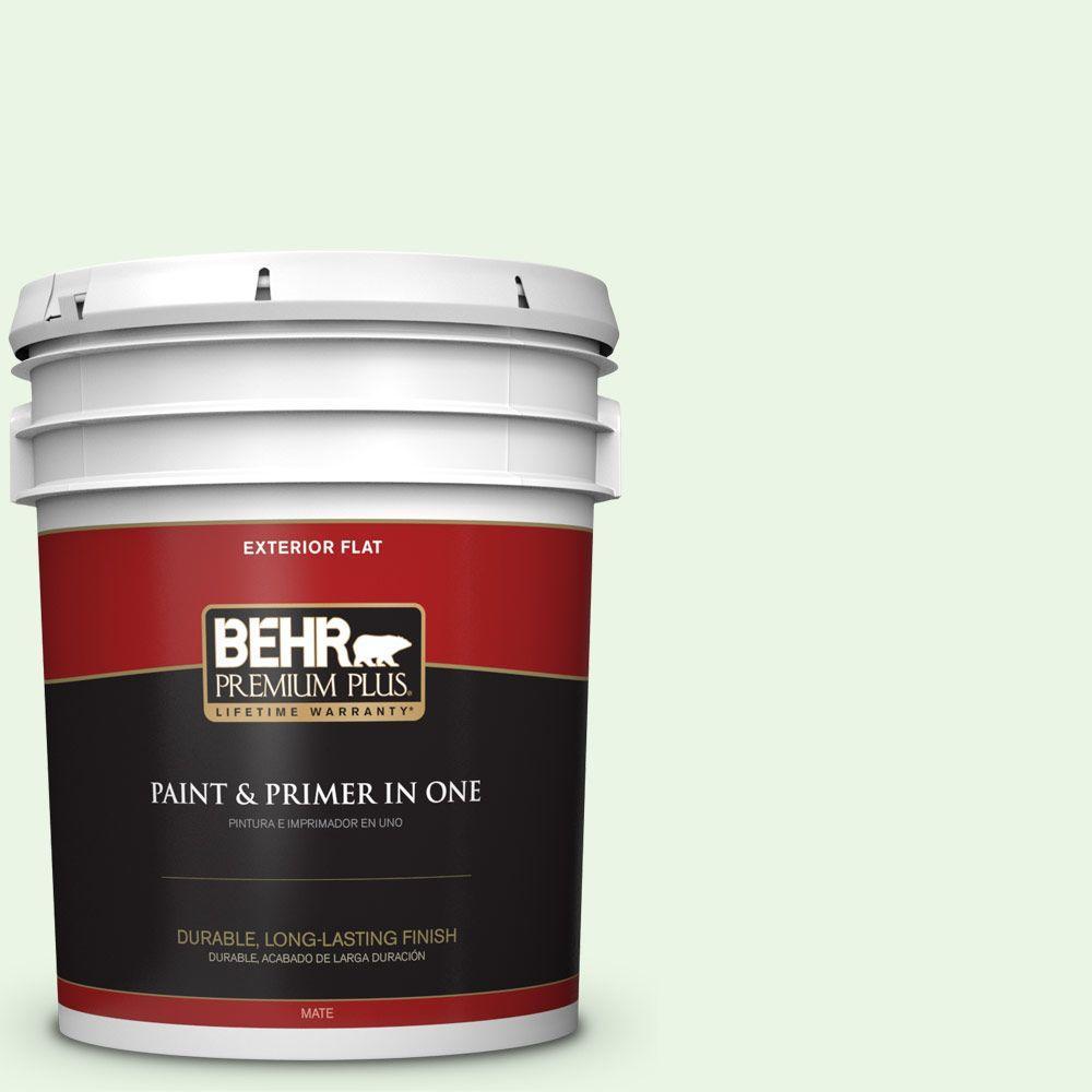 BEHR Premium Plus 5-gal. #430A-1 Mint Hint Flat Exterior Paint