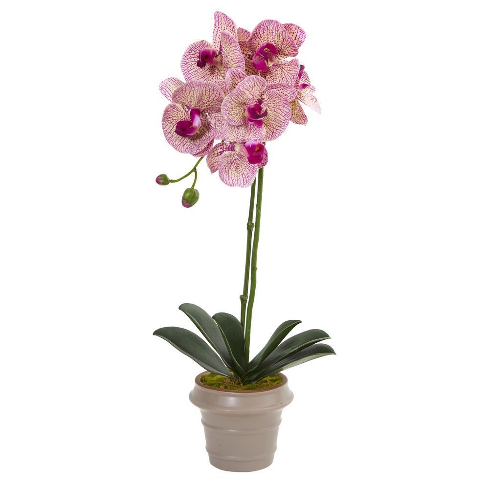 20 in. Designer Phalaenopsis Orchid Artificial Arrangement