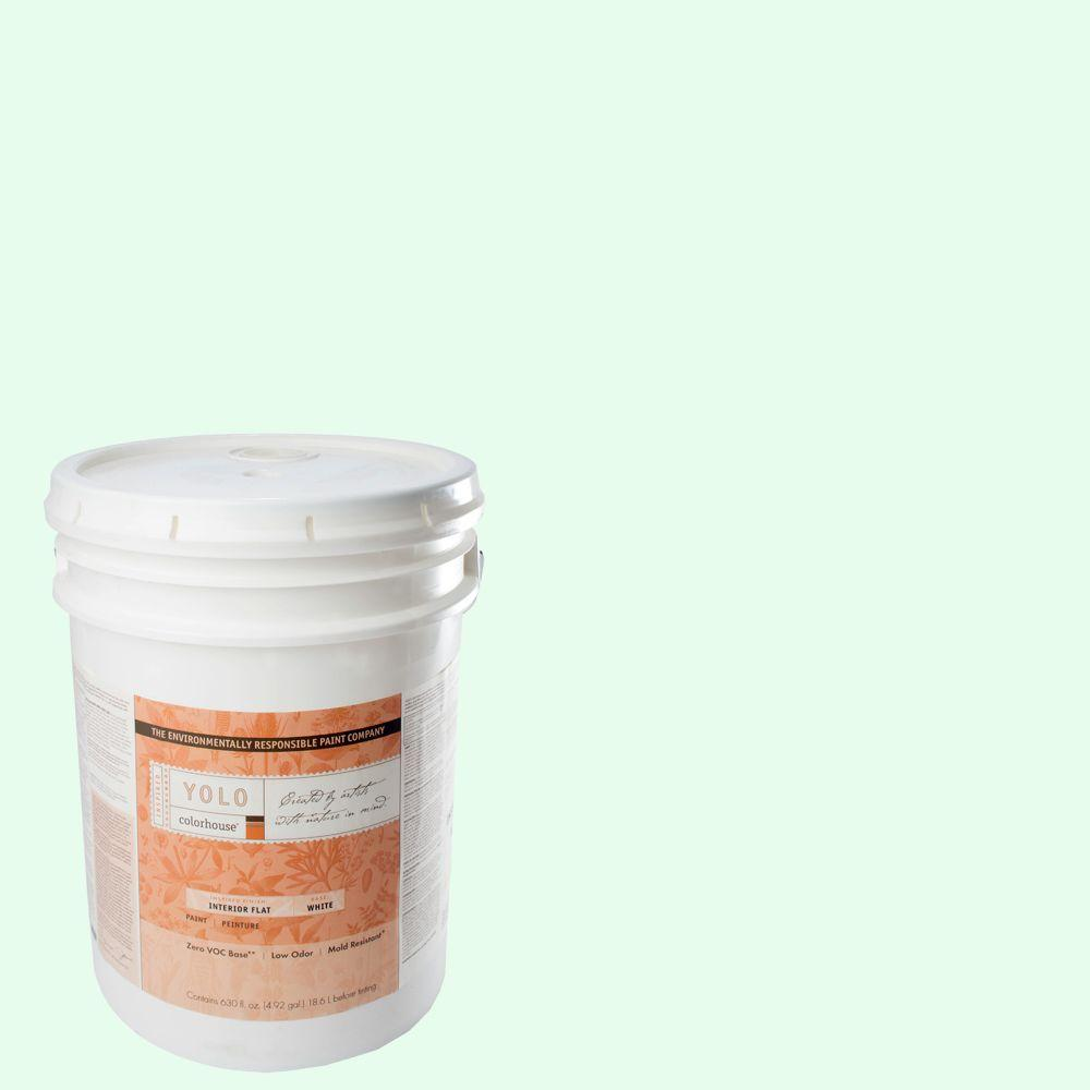 YOLO Colorhouse 5-gal. Air .05 Flat Interior Paint-DISCONTINUED