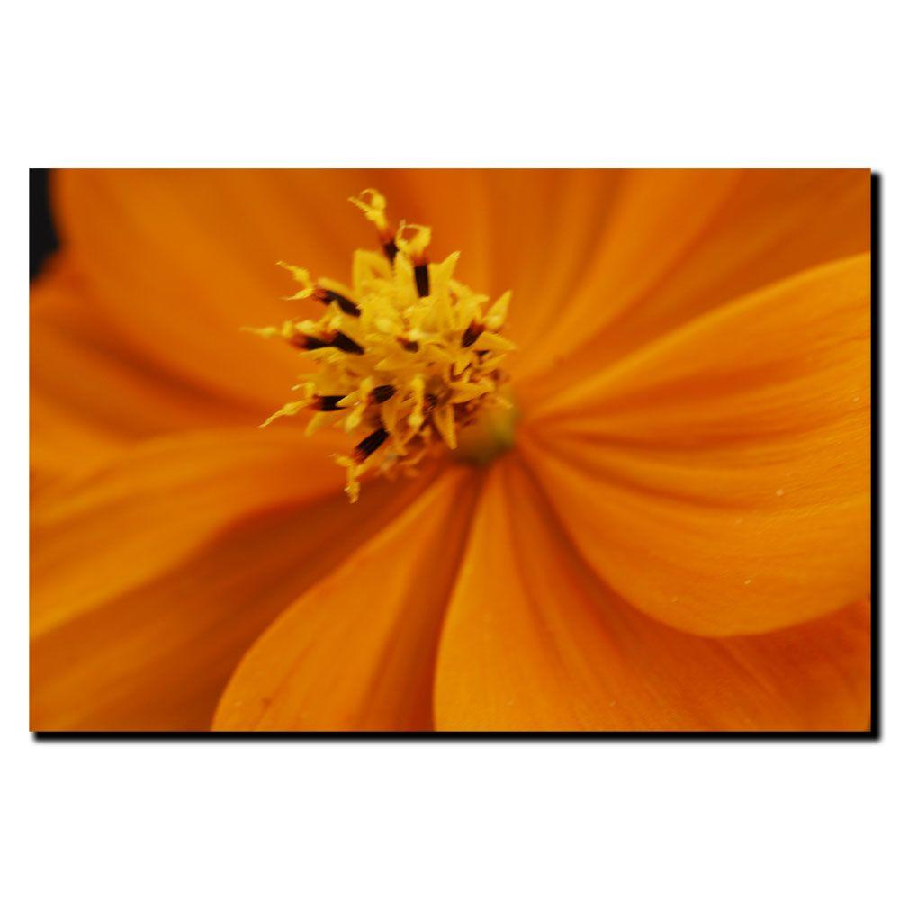Trademark Fine Art 18 in. x 24 in. Orange Flower Canvas Art