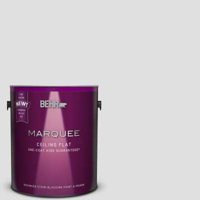 1 gal. #MQ3-55 Tinted to White Lie One-Coat Hide Flat Interior Ceiling Paint and Primer in One
