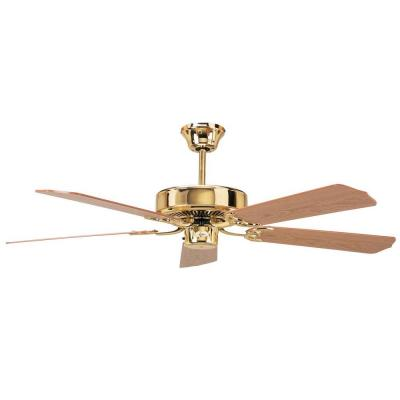 Calli 52 in. Polished Brass Ceiling Fan with 5 Blades