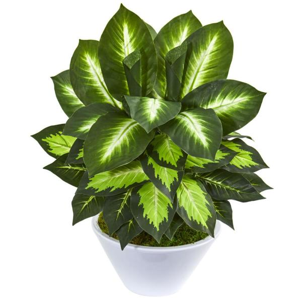 Nearly Natural Indoor 21-In. Golden Dieffenbachia Artificial Plant in White
