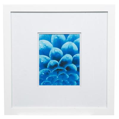 Gallery 8 in. x 10 in. White Double Mat Picture Frame