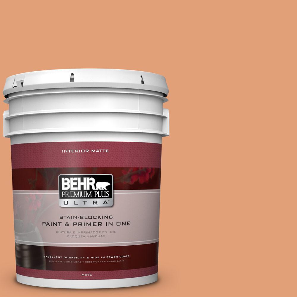 BEHR Premium Plus Ultra 5 gal. #M220-5 Roasted Seeds Matte Interior Paint
