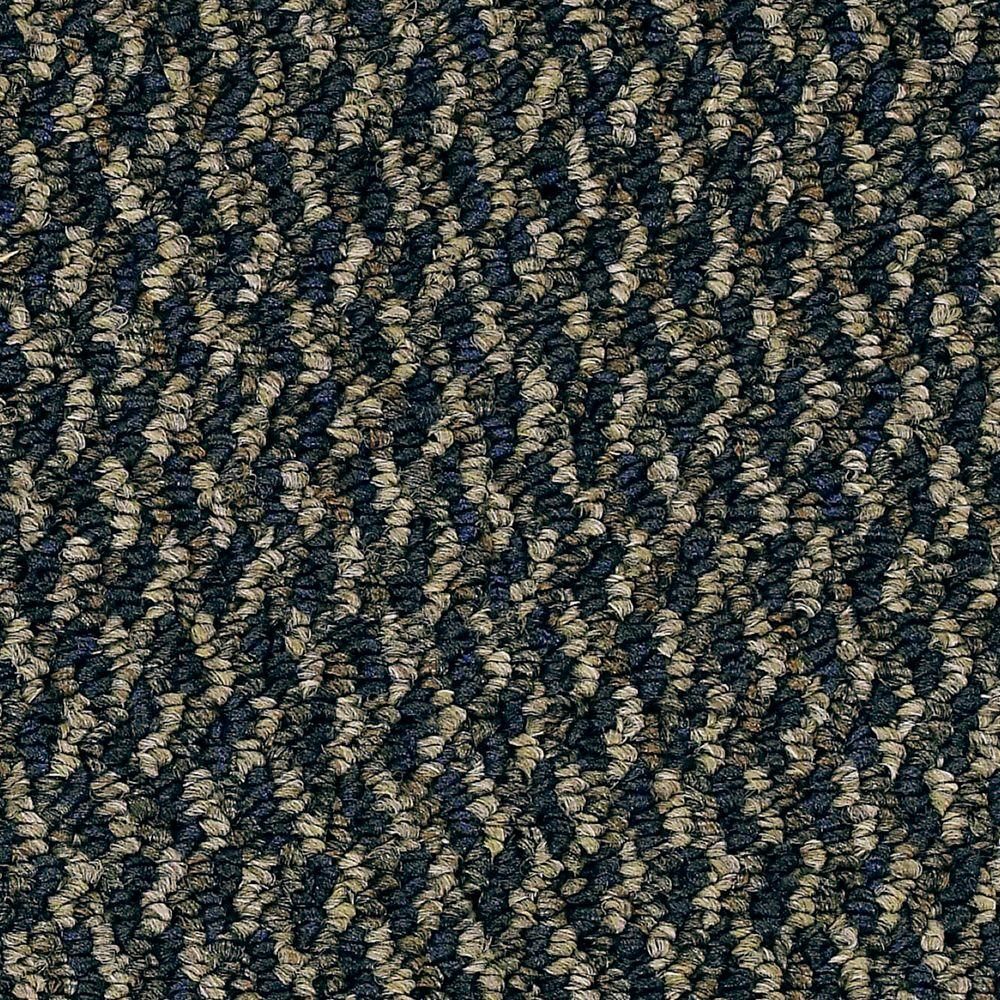 TrafficMASTER Rainstorm - Color Wave Pattern 12 ft. Carpet