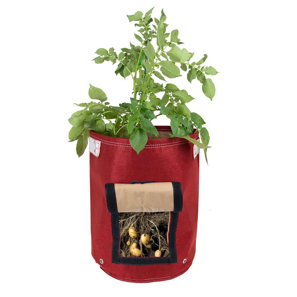 9 Gal. Honey Dew Fabric Potato Planter Bag